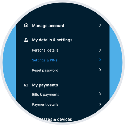 Select 'Setting & PINs' from the My Account menu